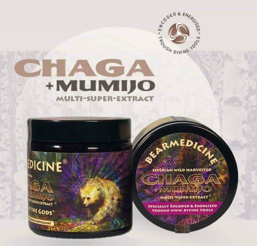 Chaga + Mumijo