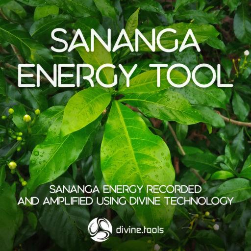 Sananga Energy Tool